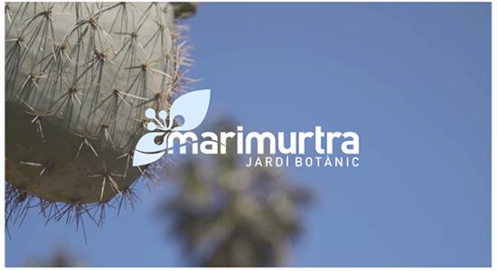 Marimutra Jardí Botànic